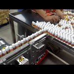 10 głowicowa automatyczna próżniowa automatyczna maszyna do napełniania perfum